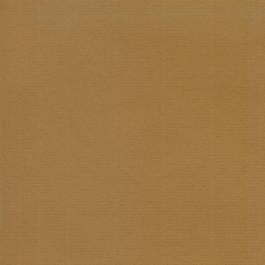 Cartulina 50x65cm - 220 gramos- Color Kraft