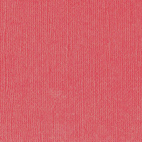 Textured Cardstock- 30.5x30.5 cm- 216g-  KISS