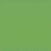 Textured Cardstock- 30.5x30.5 cm- 216g-  FROG