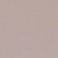 Textured Cardstock- 30.5x30.5 cm- 216g- RHINO
