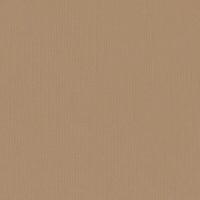 Textured Cardstock- 30.5x30.5 cm- 216g- PEANUT
