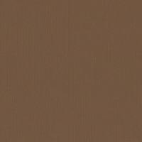 Textured Cardstock- 30.5x30.5 cm- 216g-  HAZELNUT