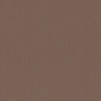 Textured Cardstock- 30.5x30.5 cm- 216g-  BEAR