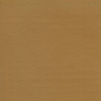 Cartulina A4 250 gramos- Color Kraft
