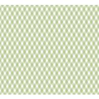 Papel cartonaje 32x48.3 cm- Trama cruzada verde PFY448