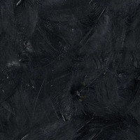 Plumas negras Artemio- 8-12 cm- 3 gramos