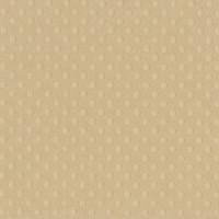 "Papel scrap Bazill embosado 12x12""""- Sandbox ( beige)"