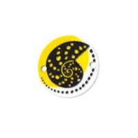 Plexy estampado - Entrepieza moneda concha 18 mm, int 1.5 mm