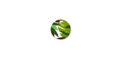 Plexy estampado - Colgante moneda circulo 20 mm estampados selva