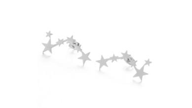 Trepadores 6 estrellas 30x13 mm- Pareja pendientes acero inoxidable plateado