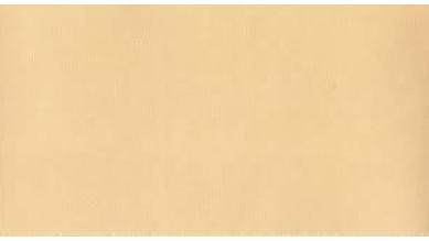 Cartulina 50x65cm - 220 gramos- Color carne