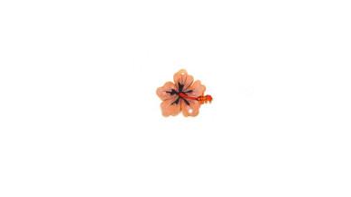 Plexy estampado - Colgante flor hibisco rosa pequeña 30x25 mm